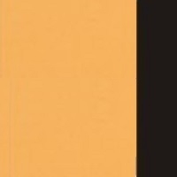 2302 żółty+czarny